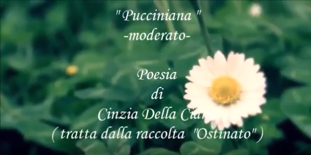 pucciniana moderato youtube